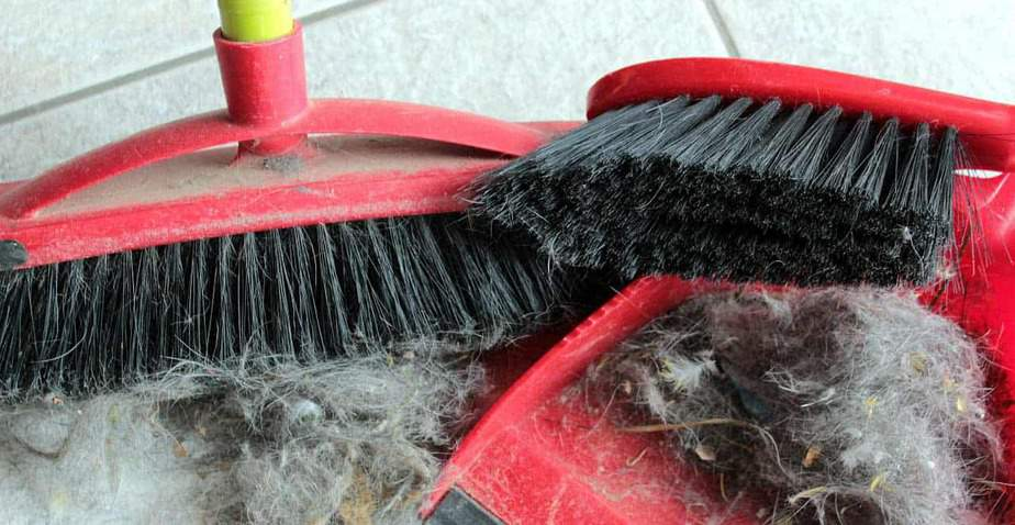 Sanificare casa vacanze - polvere
